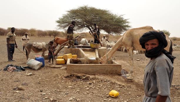 La Mauritanie parmi 6 pays menacés de famine