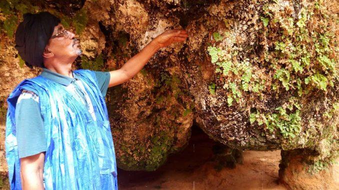 « Ouâd » Ehel Hejaje, un coin de paradis dans le Nord mauritanien