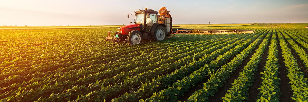 Campagne agricole pour la saison 2018 : Objectifs atteints et d'autres en attente