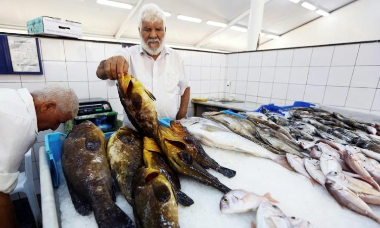 La pêche à l'explosif en Libye, fléau écologique en Méditerranée