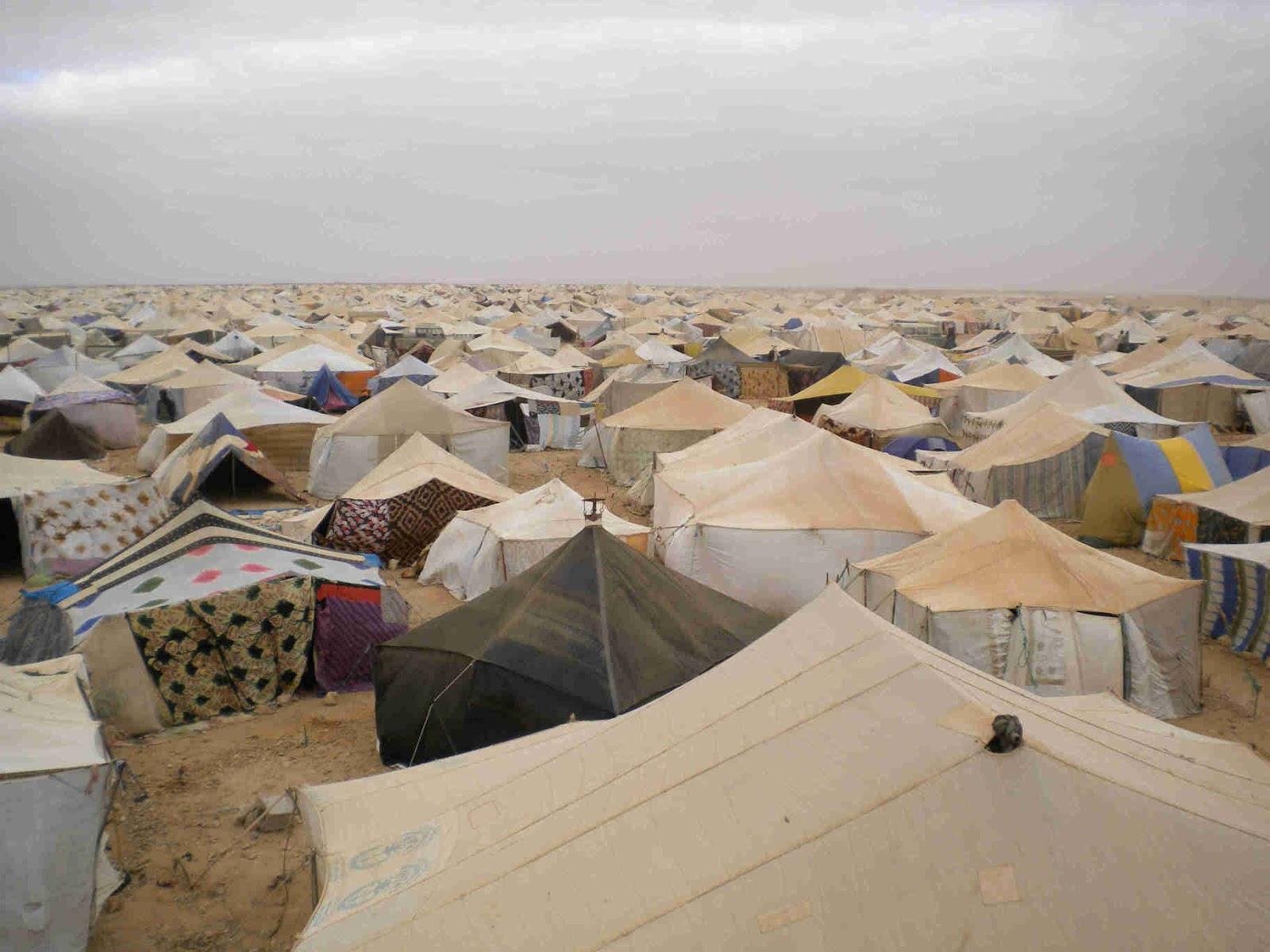 La Tente mauritanienne, expression de l'authenticité pour attirer l'électeur