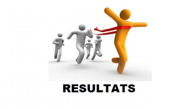 Conseil Régional de Nouakchott : résultats après dépouillement de 90 bureaux de vote