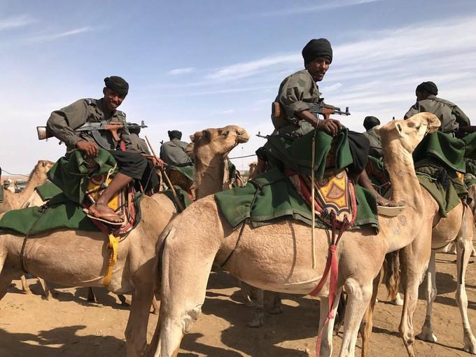 En Mauritanie, l'armée patrouille à dos de chameau