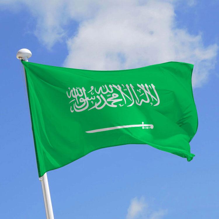 Arrivée à Nouakchott du ministre d'État saoudien des Affaires africaines