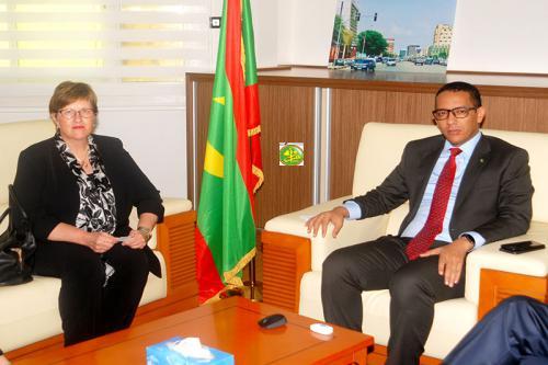 Le ministre du pétrole, de l'énergie et des mines reçoit l'ambassadrice de Finlande