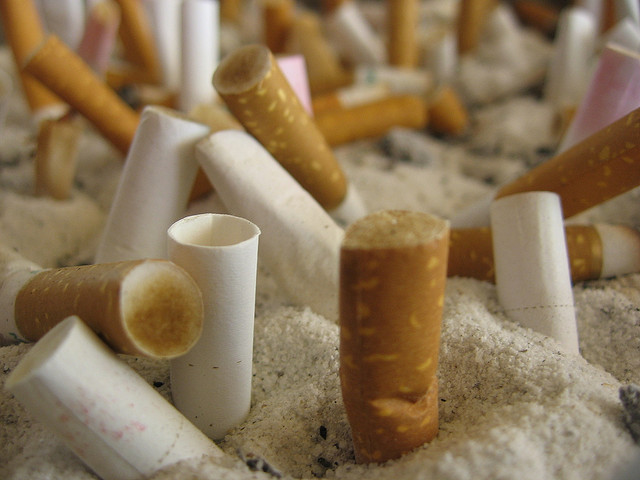L'armée mauritanienne saisit 50.000 paquets de cigarettes frauduleuses