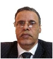 Présidentielle 2019 : Choisir son Président, c'est choisir son pilote de ligne/Par Mohamed Abdallahi Boussery