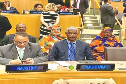 La Mauritanie réélue membre du comité de l'ONU pour l'élimination de la discrimination raciale