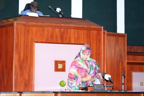 L'Assemblée nationale adopte un projet de loi relatif au programme-contrat pour la réalisation de forages