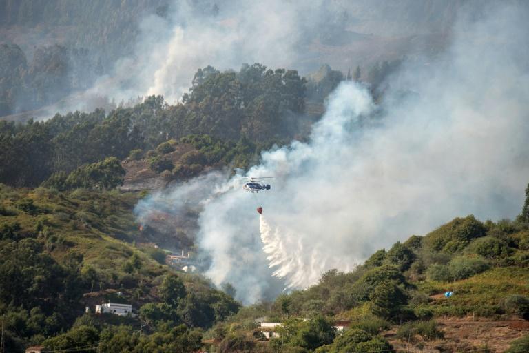 """""""Drame environnemental"""" à Grande Canarie, ravagée par un incendie"""