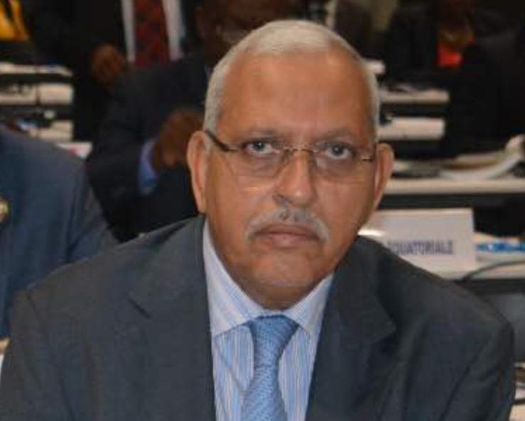 Abderrahmane Marrakchy, ancien député du parti Sursaut de la jeunesse pour la Nation : 'Ce n'est ni dans l'intérêt du Président ni dans celui d'Ould Abdel Aziz de créer une situation bicéphale dans la gestion du pays'