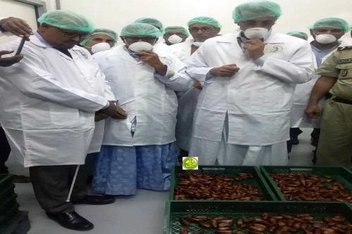 Le ministre du développement rural s'enquiert de certaines installations agricoles en Adrar