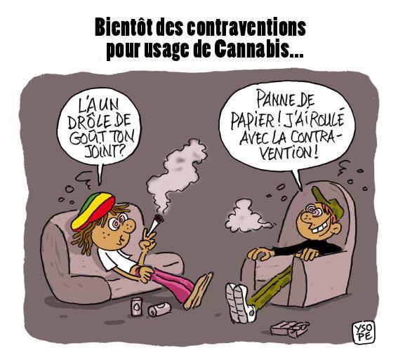 Nouadhibou : Incinération de quantités de drogue et de stupéfiants