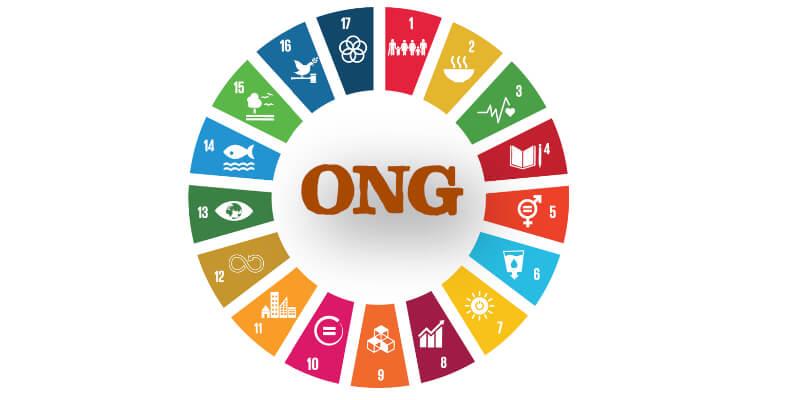 Renforcement des capacités des ONG actives dans le domaine du Patrimoine Culturel Immatériel