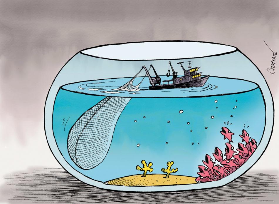 Scandale/fraude à l'exportation: un bateau collecteur immobilisé