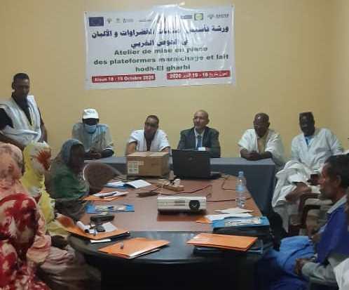 Hodh Elgharbi: Appui du Projet SAFIRE pour la promotion des filières lait et maraichage