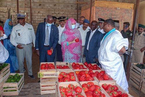 Nouakchott : La ministre du commerce visite le marché des légumes
