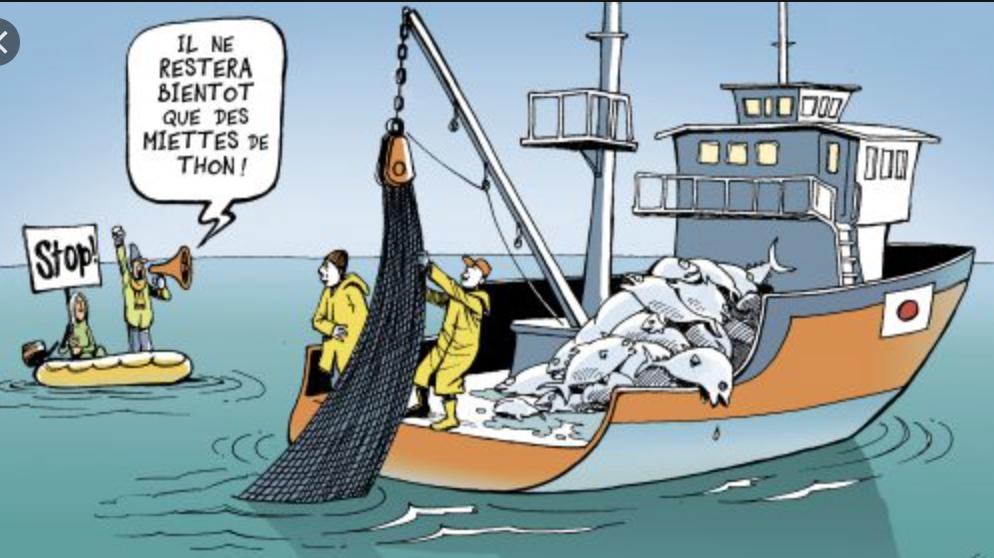 Pêche : L'Espagne préoccupée par l'état des négociations entre l'UE et la Mauritanie