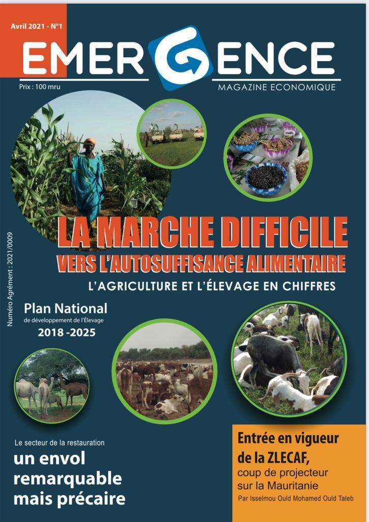 EMERGENCE, Magazine Economique Exclusif