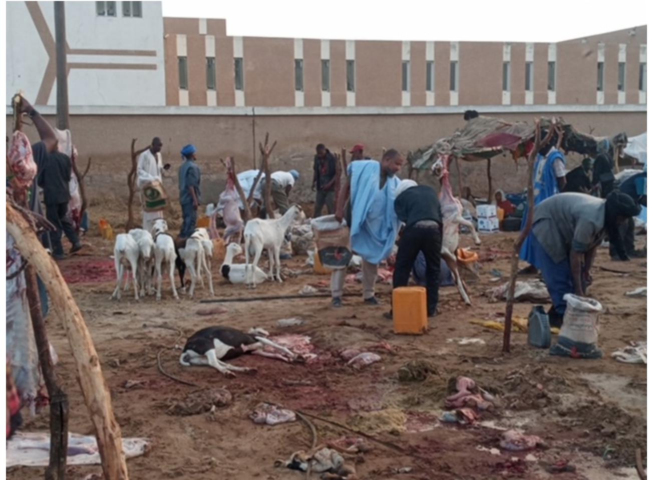 Jour de fête: Ambiance au marché de bétail