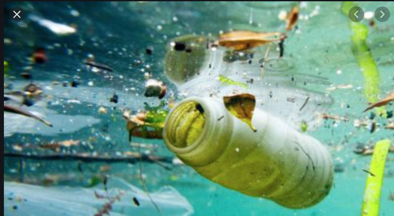 Scandale des déchets maritimes : chassé du Sénégal, le navire de Hapag Lloyd accoste en Mauritanie