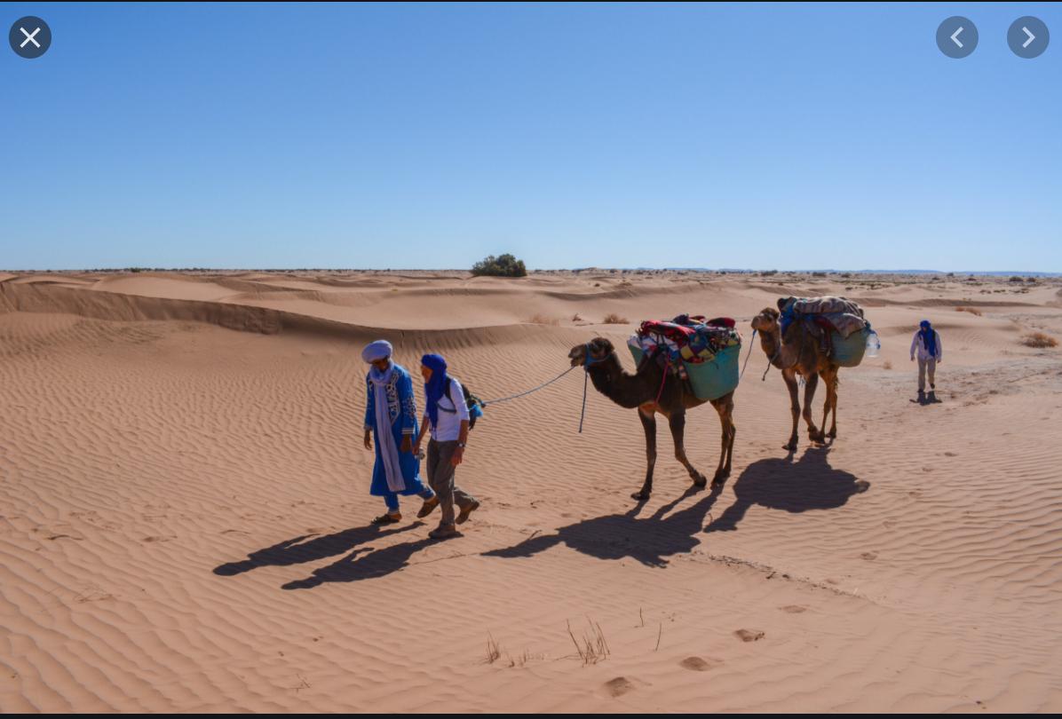 Recherche de l'eau: Un bureau d'études français à Tidjikja