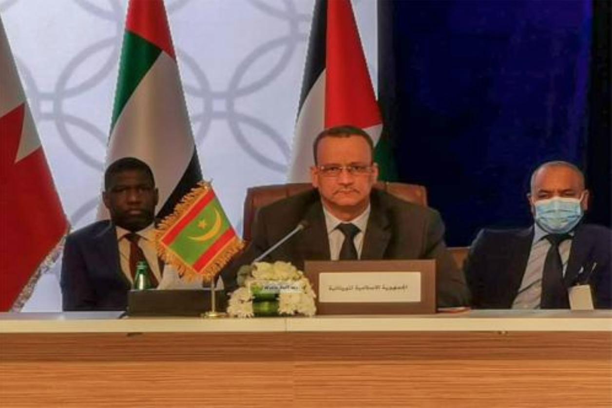 Le ministre des Affaires étrangères participe à une consultation des ministres arabes des Affaires étrangères