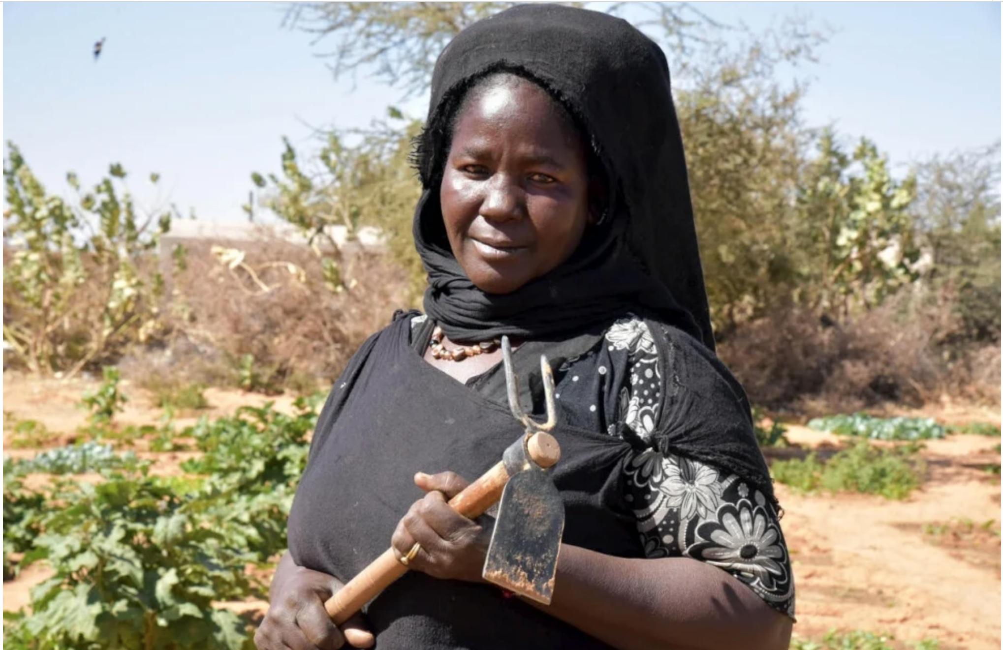 Réfugiés et Mauritaniens partagent leurs stratégies d'adaptation au changement climatique