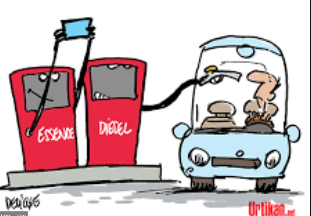Tabaski/retour au terroir: Quand les tarifs explosent