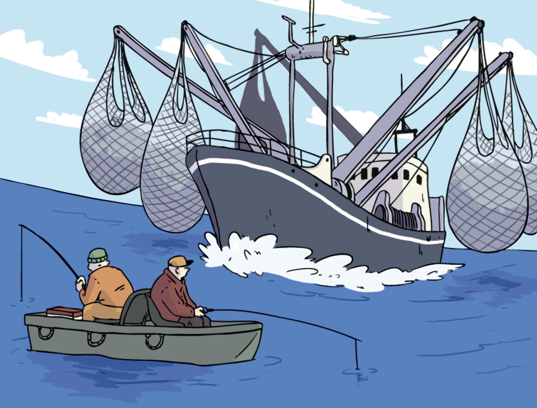 Le ministre des pêches : « les politiques et les plans élaborés pour le secteur n'ont pas été exécutés »