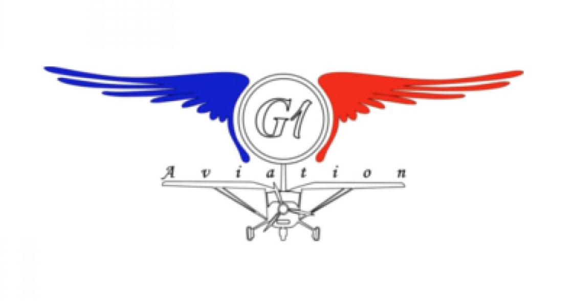 La Mauritanie réceptionne deux avions militaires légers français