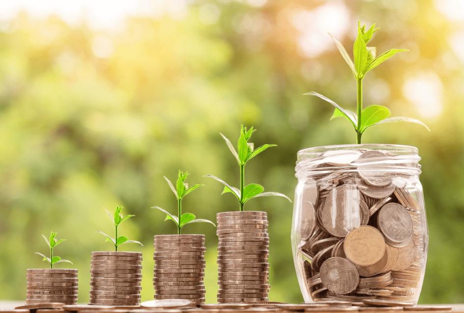Financement de projets générateurs de revenus au Gorgol