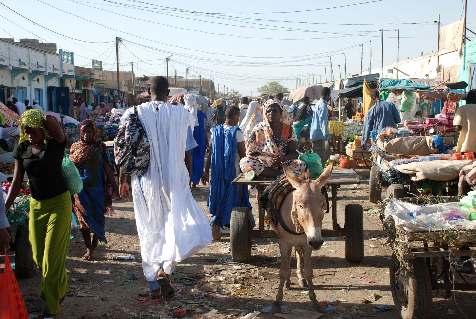 Haram : les Emirats Arabes Unis offrent à la Mauritanie 50 voitures d'une valeur de 3,6 milliards d'ouguiyas !