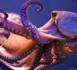 La journée du poulpe pompeusement célébrée