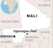 Tuerie au Mali: le gouvernement met fin à une milice de chasseurs