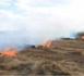 Mauritanie : vastes incendies de pâturages dans l'est du pays