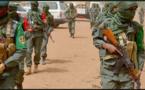 Le Drian salue l'adoption de la résolution sur le déploiement de la force du G5 Sahel
