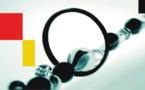 Partenariat GIZ/ODZASAM : Démarrage au Hodh Elgharbi du Diagnostic pour le renforcement des capacités des AGLC