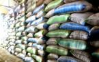 Mauritanie: Liquidation de la SONIMEX
