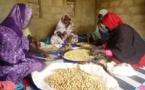 Premiers produits mauritaniens certifiés « BIO » en destination des marchés Européens et Américains