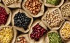 Distribution des quantités de semences améliorées aux coopératives des maraichères à Kiffa