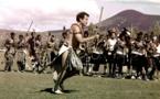 """L'Afrique du Sud rend hommage à son """"Zoulou blanc"""" Johnny Clegg"""