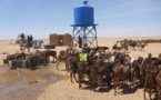 Vers une plus grande intégration de l'élevage dans l'économie nationale
