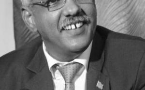 L'Ambassadeur de la Mauritanie en Guinée présente ses lettres de créance au President Condé