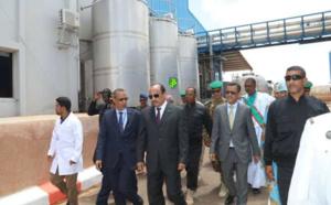 Mauritanie : la SMPL a du mal à s'approvisionner en lait local (Ould El Ghailany)