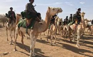 Le wali du Gorgol se réjouit des efforts des Forces Armées et de sécurité dans la sécurisation des frontières