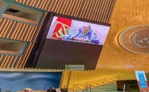 La ministre de l'Environnement et du Développement durable participe au dialogue sur la désertification, la dégradation des terres et la sécheresse